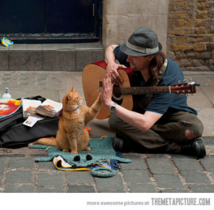 thinkhurt.com_homeless-man-cat-high-five