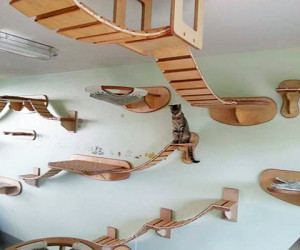 Cat playground - Wall-mounted